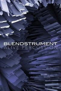 好莱坞影视配音音源8Dio Blendstrument Alive Percussion KONTAKT
