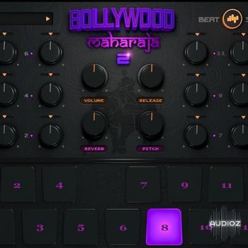 虚拟鼓音源BeatSkillz Bollywood Maharaja v2.0
