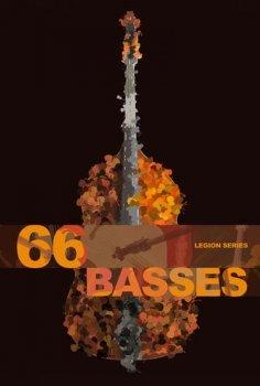 低音贝斯音源Legion Series: 66 Bass Ensemble KONTAKT