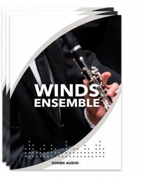 木管音色Sonex Audio Woodwinds Ensemble KONTAKT