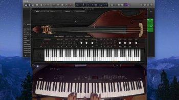 贝斯音源Ample Sound Ample Bass Upright III v3.00 MacOS