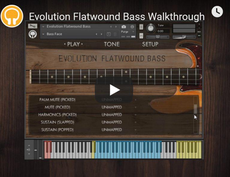 橘子树电贝斯音源Orange Tree Samples Evolution Flatwound Bass