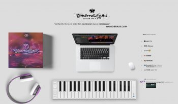 电子音乐制作素材库Design My Beat TomorrowLand Elixir of EDM KONTAKT