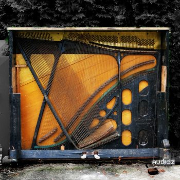 无键琴体钢琴音源Detunized The Keyless Piano Body KONTAKT