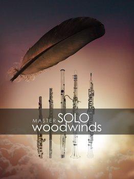 独奏木管音源Auddict Master Solo Woodwinds Bundle KONTAKT