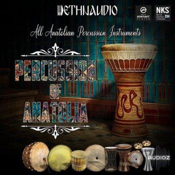 安纳托利亚的民族打击乐音源Ethnaudio Percussion Of Anatolia KONTAKT