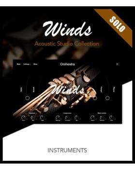 超好用的独奏木管音源Muze Woodwinds Solo KONTAKT
