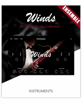 超级逼真的合奏木管音源Muze Woodwinds Ensemble KONTAKT