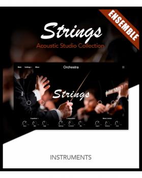 超逼真的管弦乐团音源Muze Strings Ensemble KONTAKT