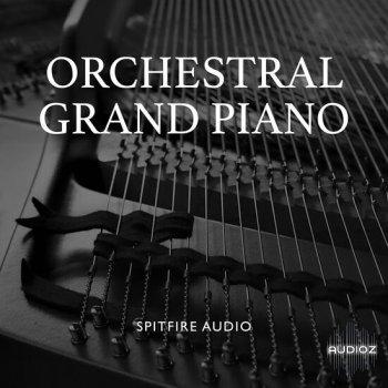 施坦威D型音乐会三角钢琴音源Spitfire Audio Orchestral Grand Piano v2.1 KONTAKT